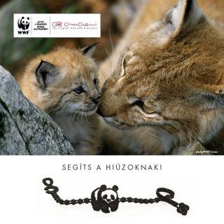 Pandás karkötő az állatok védelméért