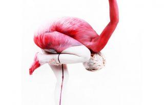 Élő flamingószobor