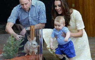 Hároméves évfordulóját ünnepli Kate Middleton és Vilmos herceg
