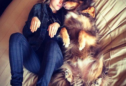 Amanda Seyfried kutyája a pánikbetegség ellen is jó