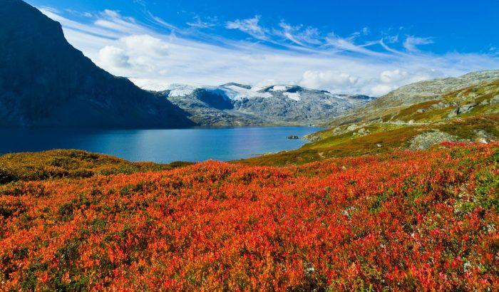 Miért éppen Norvégia – 5 tipp egy üdítő nyaraláshoz