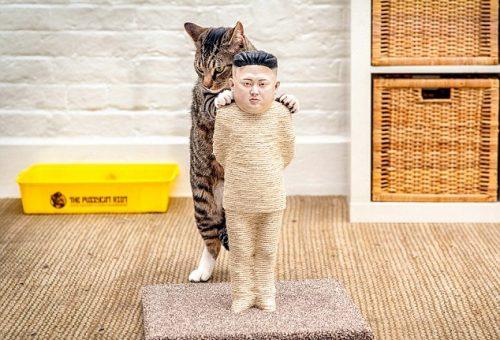 Macskajátékok az internetcenzúra ellen