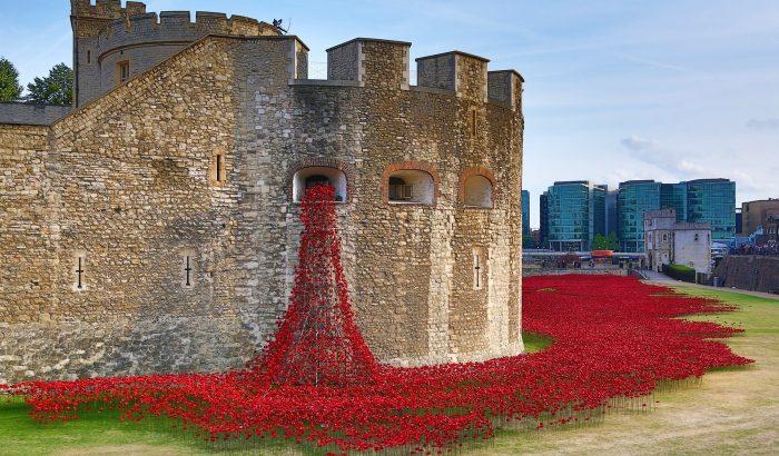 Kerámiapipacsok vöröslenek a londoni Tower alatt