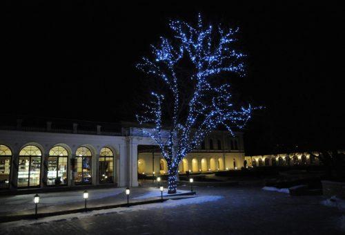 Balatoni borkarácsonyfa a Városligetben