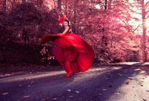 10 elképesztő fotósorozat 2014-ből