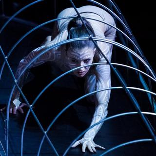 Premierek a Szegedi Kortárs Balettnél