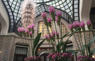 A legszebb virágdekorációk Budapesten