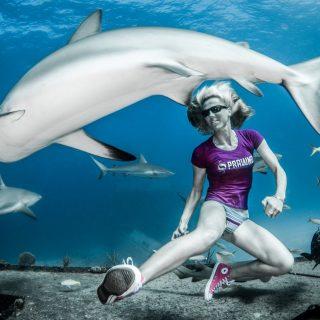 Karate a cápákkal