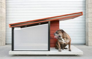 Ilyen egy kutyaház luxuskivitelben