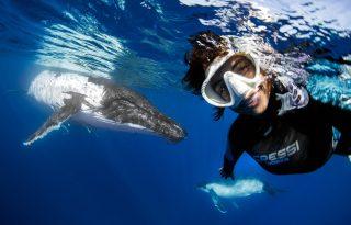 Elképesztő szelfi egy bálnával