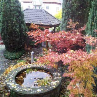Így fest az év legszebb kertje!