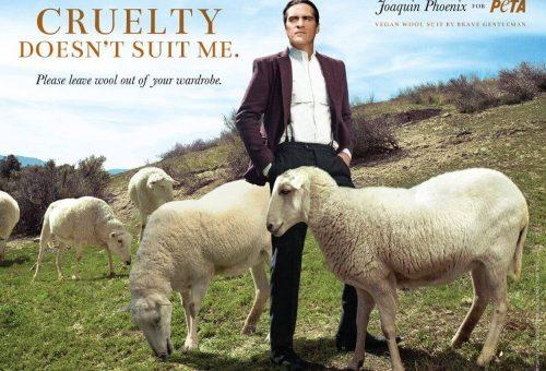 Joaquin Phoenix lehet a birkák megmentője