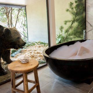 Medveles a fürdőkádból