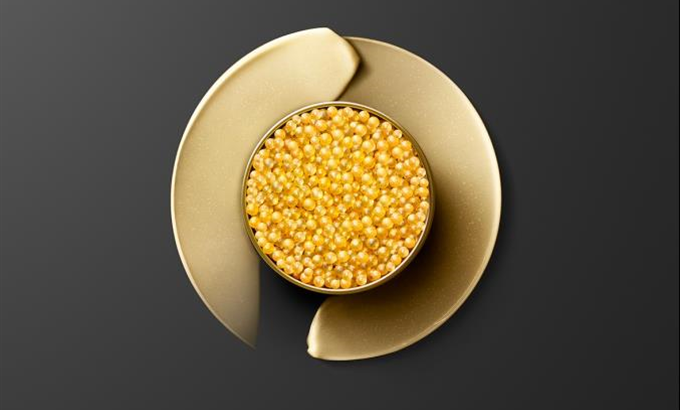 Kortárs installációkkal ünnepel a 30 éves Skin Caviar