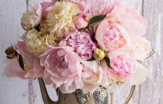 Ezzel a trükkel meghosszabbíthatod a vágott virágok életét