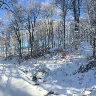 A kedvenc havas, mátrai tájunk