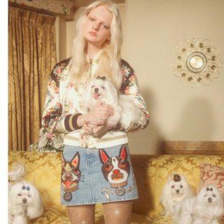 Minden a kutyákról fog szólni a Gucci legújabb kollekciójában