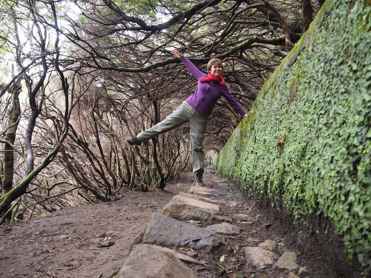 5. kép: Madeira