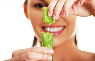 Aloe vera, a szépítő zseni