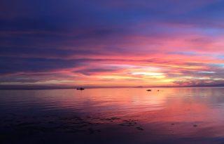 Virágom, világom: az új sziget csodája