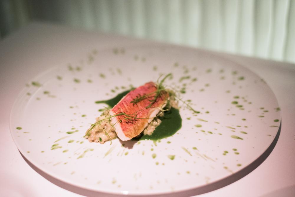 7. kép: Észak-atlanti vad vörös márna, bulgur, spenót, koriander, spárga, miso majonéz