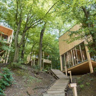 Kedvenc helyünk a héten Extra: Treehouses Noszvaj