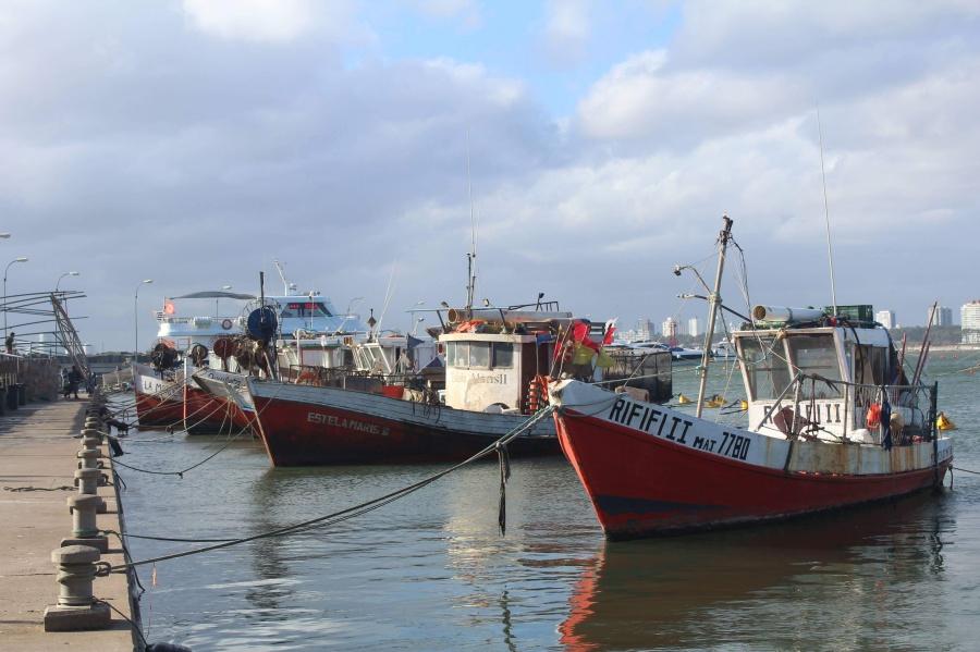 5. kép: Punta del Este kikötője