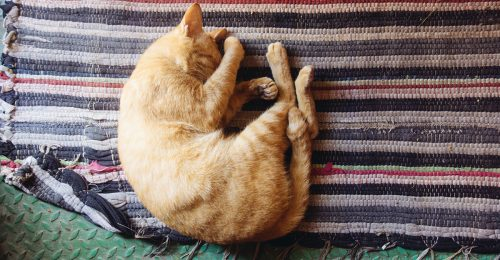 Hangulatzavarokhoz vezethet a rossz alvás