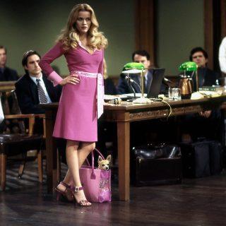 Reese Witherspoon újra Doktor Szöszi lesz – harmadszor