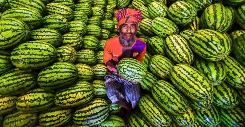 Bangladesnek áll a legjobban a dinnyeszezon