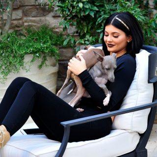 Kylie Jenner légkondis kutyaházat csináltatott
