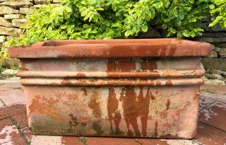 25 hasznos tipp a víztakarékos konyhakerthez