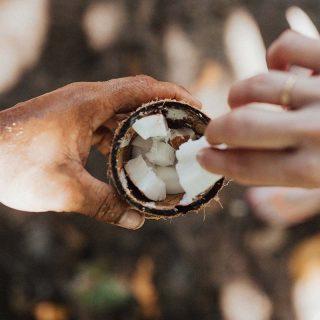 Kókuszolajas kávé a legújabb egészségtrend