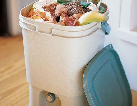 ÖKO: így komposztálhatunk a lakásban is