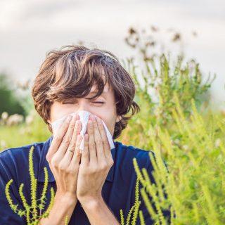 Last minute tippek allergiára