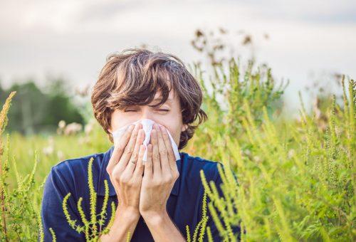 Allergénmentes otthon 5 lépésben