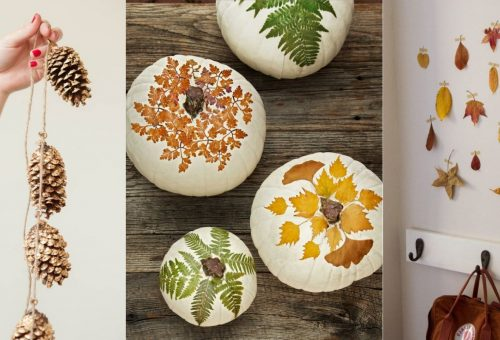 ÖKO: tízperces ötletek hulladékmentes őszi dekorhoz