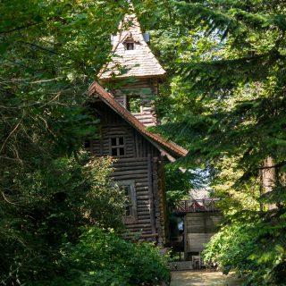 Gyere velem vidékre: tóséta és üvegházi barangolások a Vácrátóti Botanikus Kertben
