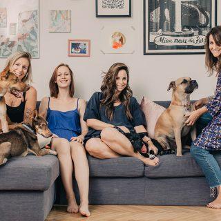 """""""Ha hagyjuk, egy kutya meg tudja változtatni az életünket"""" – indul a Mindenki fogadjon örökbe egy kiskutyát blogja"""
