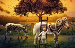 Zebrát fest és a nappaliban úszik egy svéd kisfiú