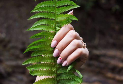 ÖKO: három szépségcucc, amiről kevesen tudják, mennyire káros a környezetünknek