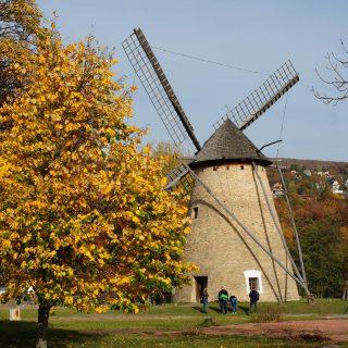 Gyere velem vidékre: egy őszi nap a Skanzenben
