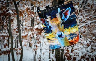 Alpesi állatvilág a magyar tervező táskáin
