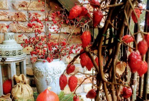 A kert is lehet ünnepi –ne csak a szobát díszítsük!