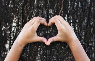 Valentin-napon ne csak a párodat, a Földet is szeresd!