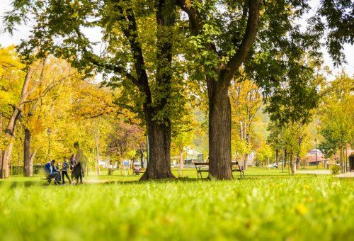 20 perc a parkban tiszta boldogság
