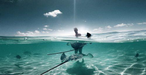 Legyél empatikus a vadvilággal a nyaralás alatt!