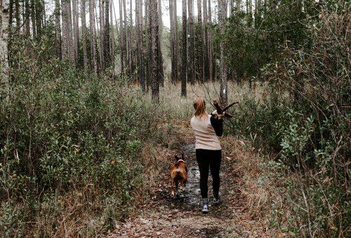 Kutyás kirándulások, kiránduló kutyák
