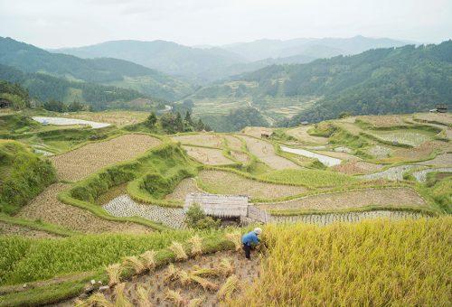 Fenntartható kistermelők a világ távoli pontjairól