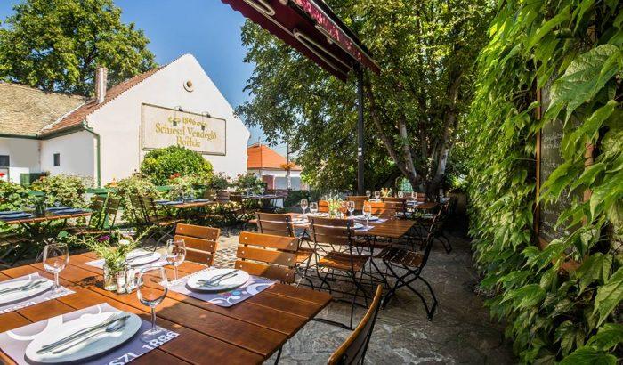 Sváb vendégszeretet Budakalászon